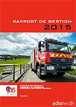 rapportgestion2015web-1